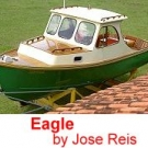 Eagle by Jose Reis